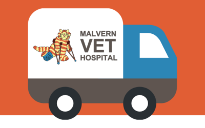 NEW: Free food delivery and mail-outs for worm and flea treatments